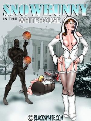 Porn Comics - BlacknWhite- Snowbunny-White House  (Interracial Comics)