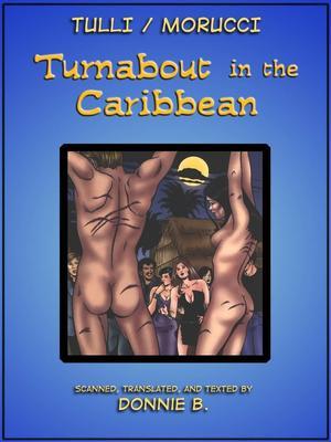 Porn Comics - Interracial- Turnabout in the Caribbean  (Interracial Comics)